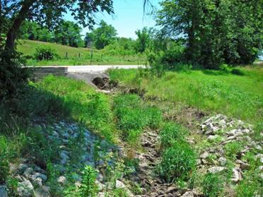 office of water riparian corridor guidelines